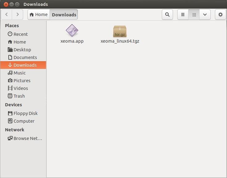 Программа для видеонаблюдения для Linux Xeoma: инструкция по установке. Запуск Xeoma двойным щелчком
