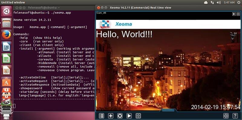 Программа для видеонаблюдения для Linux Xeoma: инструкция по установке. Запуск при обращении к файлу