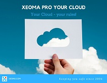 Download the Xeoma Pro Your Cloud presentation in PDF