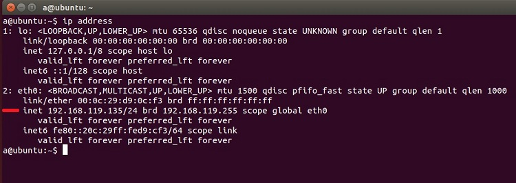 Console command to check the machine IP address in Linux, Mac OS X, etc.