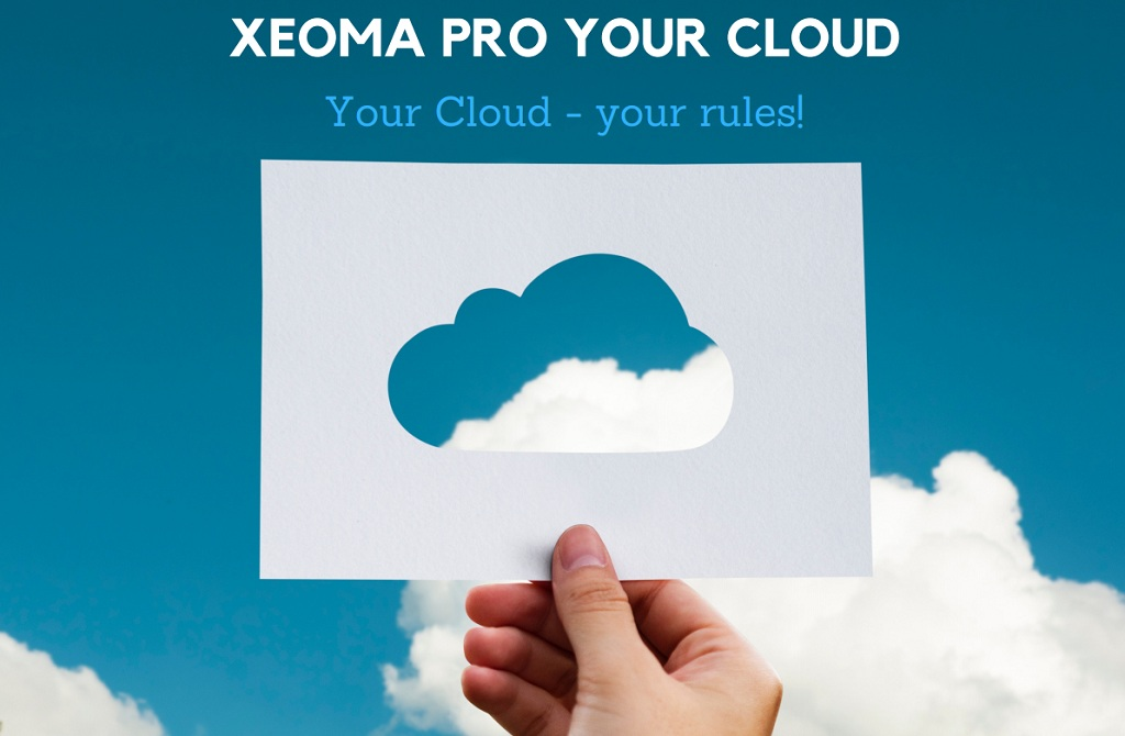xeoma_video_surveillance_software_vsaas_cloud_for_resellers_en
